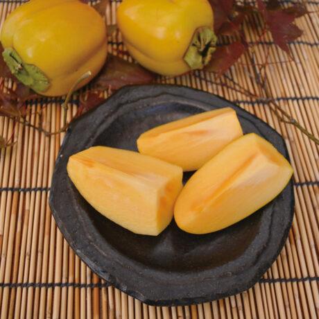 原産 西条柿
